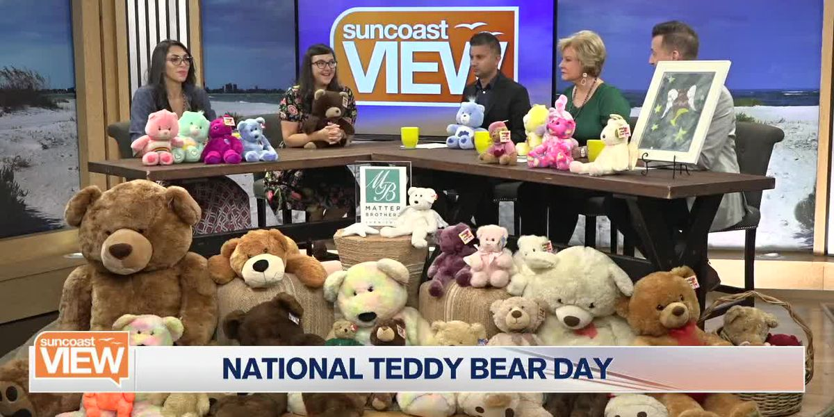 We Learn About a Local Teddy Bear Collector and How His Story Lives On | Suncoast View