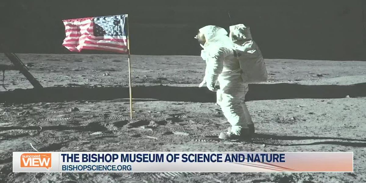 We Learn the History of Apollo 11 with Bishop Museum of Science and Nature | Suncoast View
