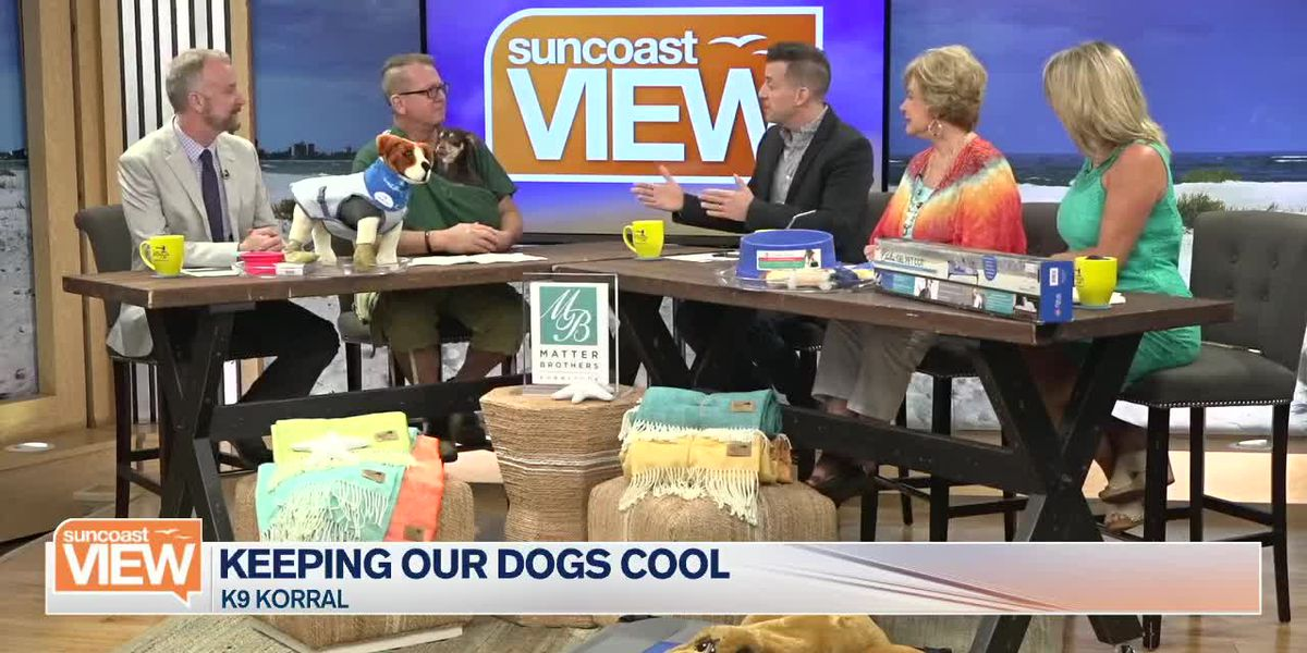K9 Korral Gives Us Tips on Keeping Dogs Cool in Summer Heat | Suncoast View