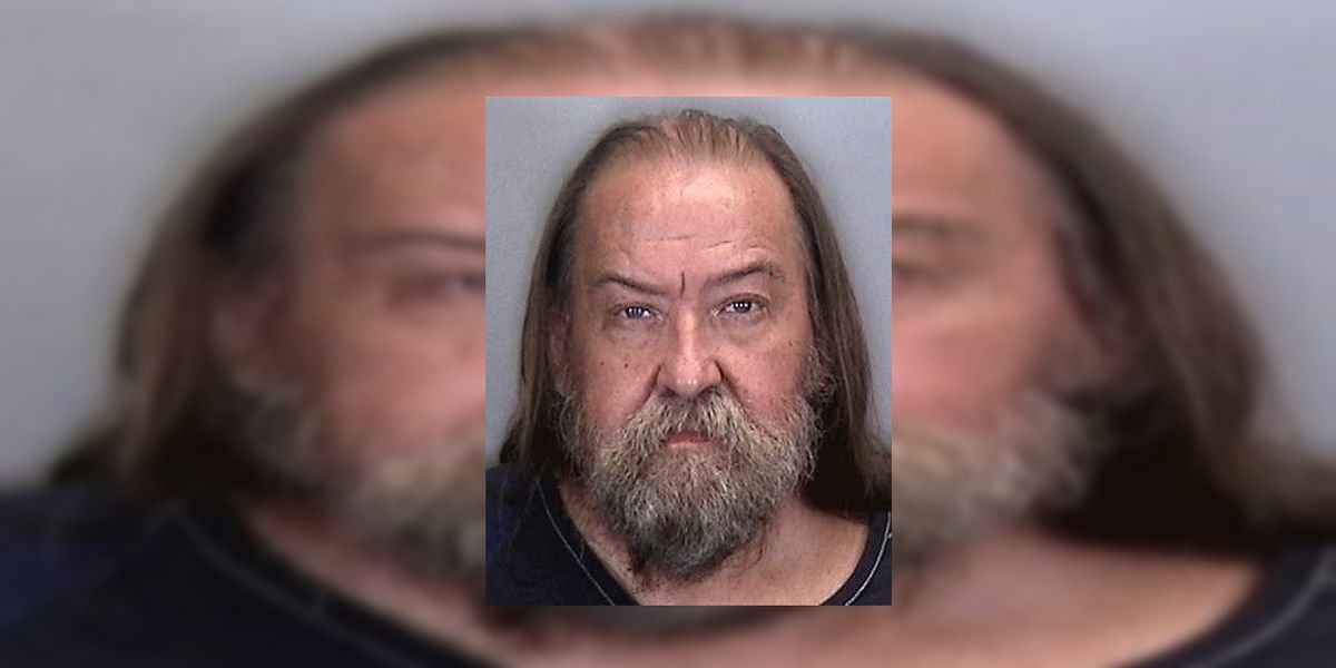 Palmetto man accused of assaulting man with baseball bat