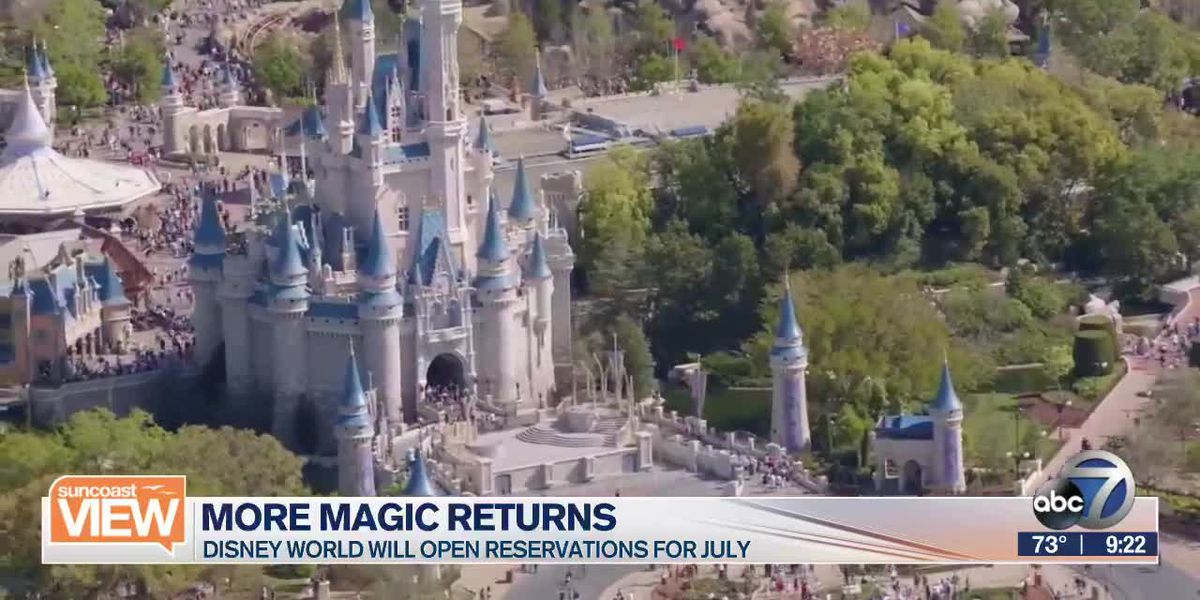 The Magic is Coming Back with Disney's Reopening | Suncoast View