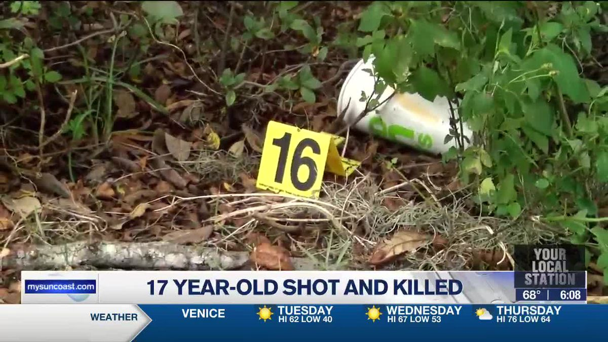 17-Year-Old Shot and Killed