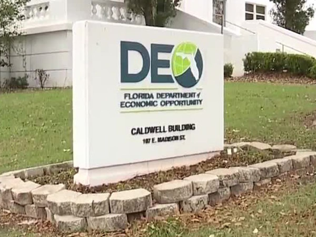 Commissioner Nikki Freid requests investigation on Florida's unemployment system