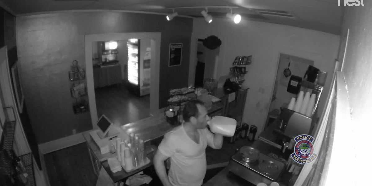Man breaks into cafe at Selby Botanical Gardens