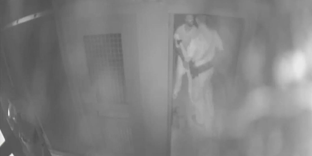 Video allegedly shows corrections deputy striking inmate, deputy could face criminal charges