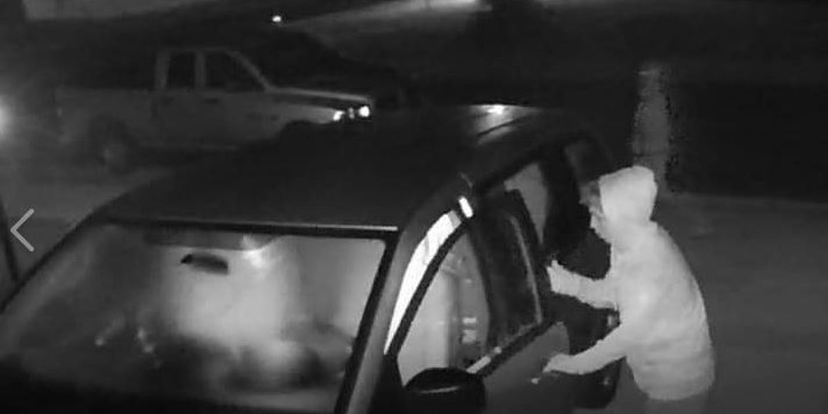 SUSPECT WANTED: Man caught on camera breaking into unlocked cars in Manatee County