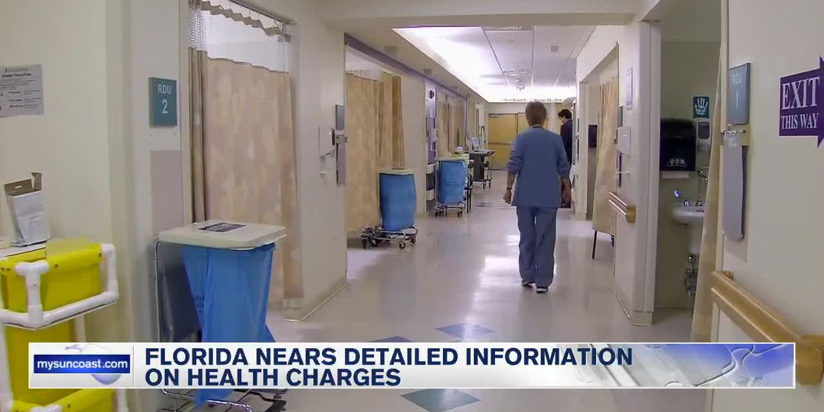 Florida nears detailed information on health charges