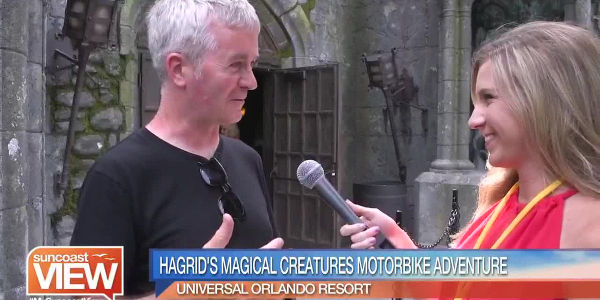 Check Out How Universal Brought Hagrid's Motorbike Adventure to Life   Suncoast View