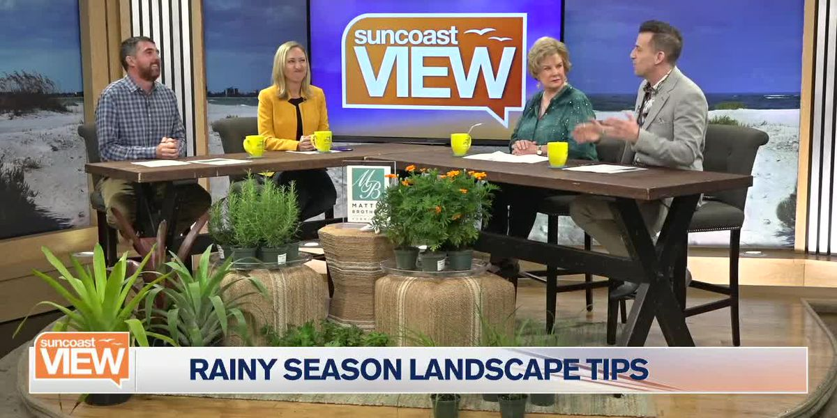 Troy's Tropics Has Tips for Protecting Plants from Summertime Showers and Bugs | Suncoast View