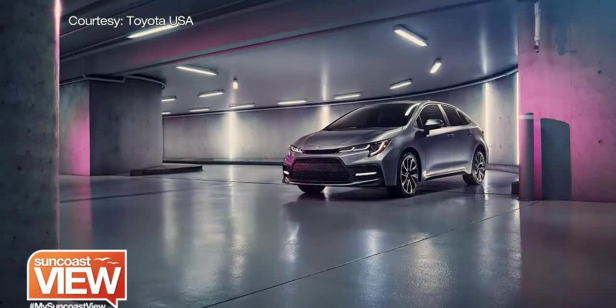 We Peak Inside the 2020 Toyota Corolla with Peterson Toyota of Sarasota | Suncoast View