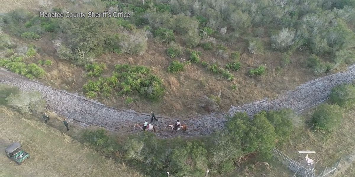 FULL VIDEO: Sheriff's office drone helps lead to the rescue of lost horseback riders in Myakka City
