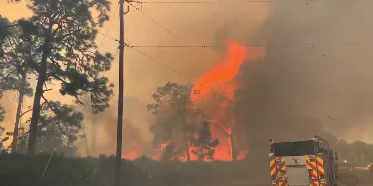 RAW VIDEO: Massive brush fire in Charlotte County