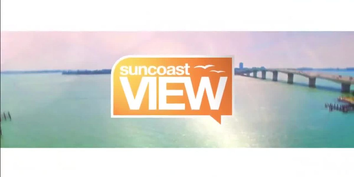 Suncoast View 11/12/19 - Part 1