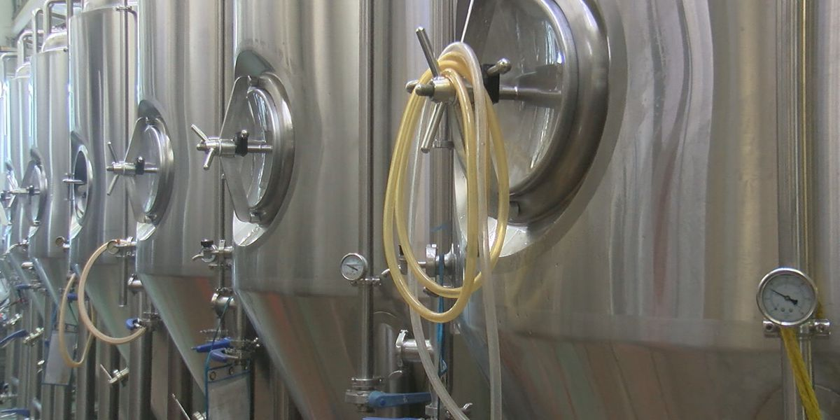 Brewing up a solution for red tide on the Suncoast
