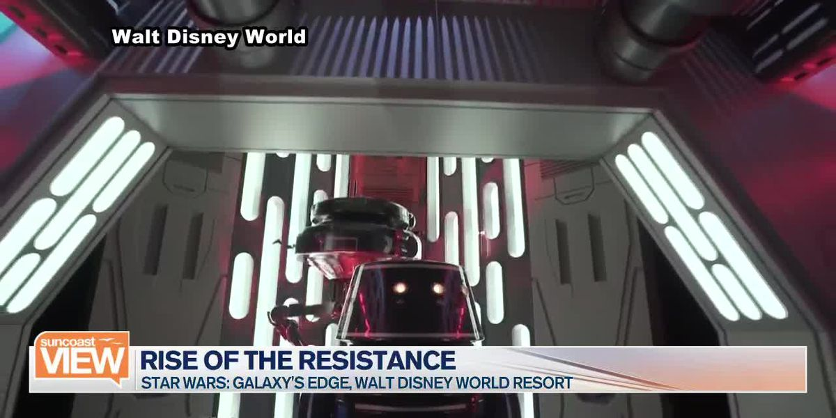 Blogger Lisa O'Dricoll Shares her Rise of the Resistance Ride Experience | Suncoast View