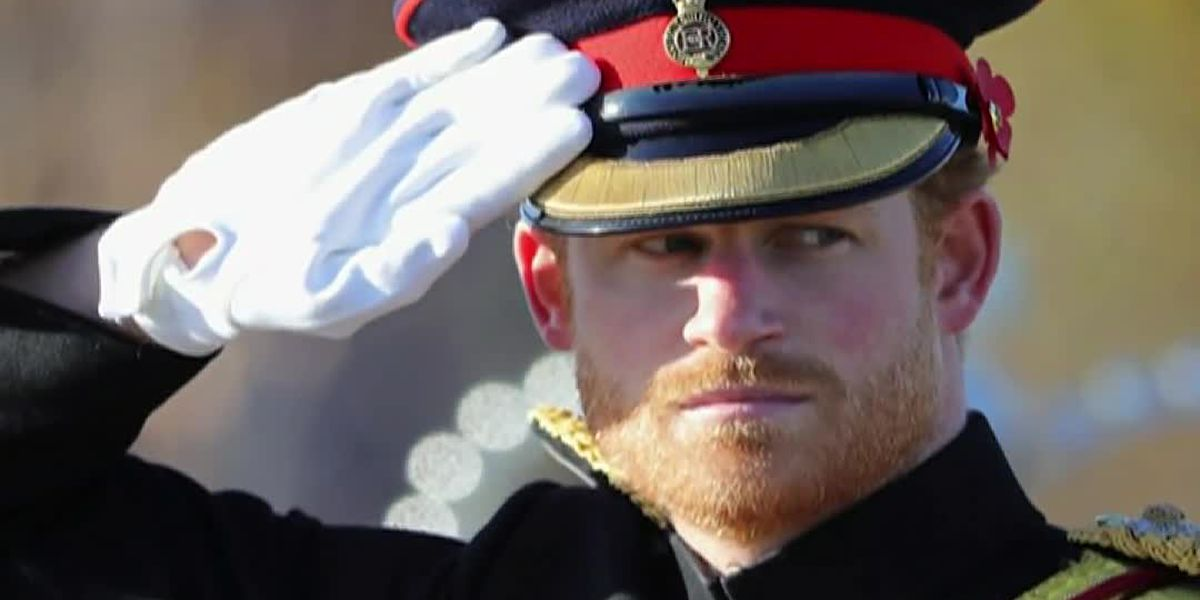 Prince Harry compares royal life to 'Truman Show'