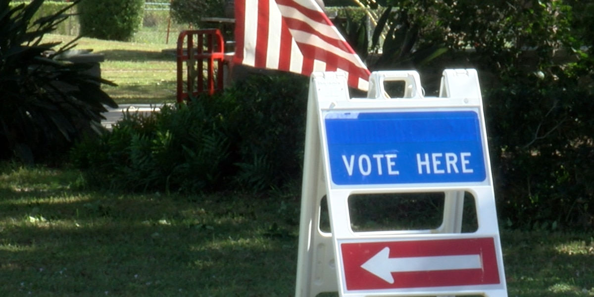 Suncoast Voters Running Into Problems at the Polls