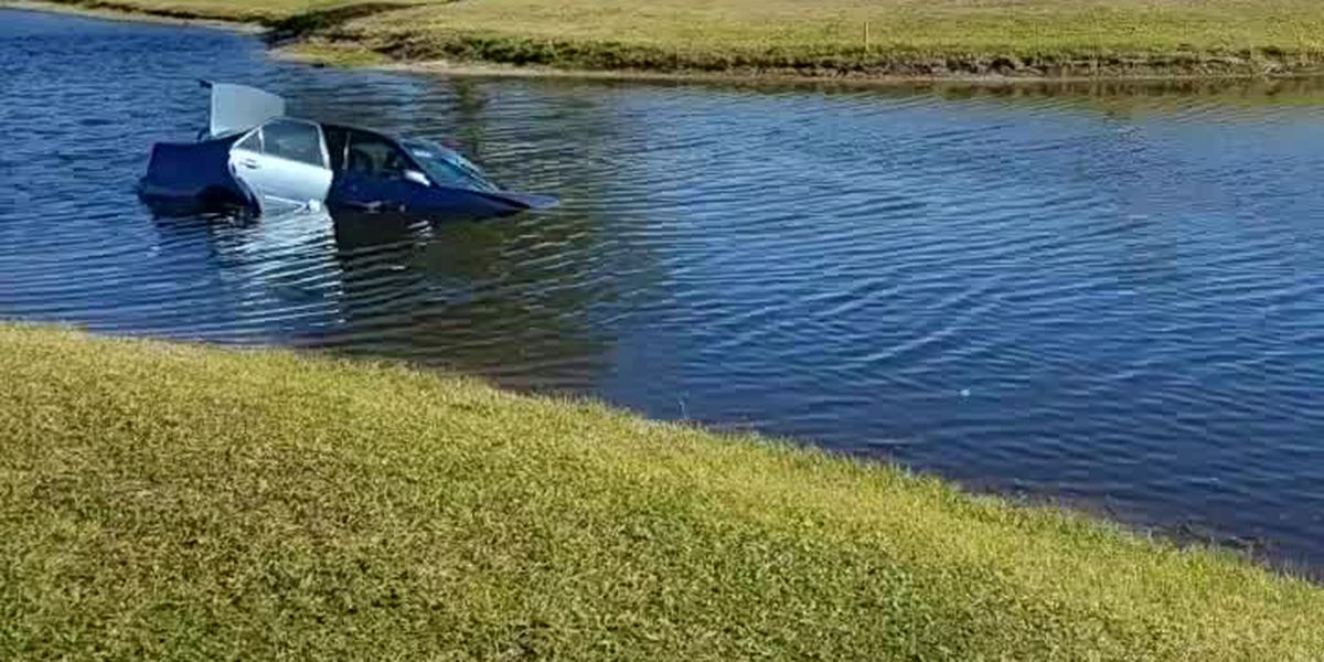 VIDEO: Car ends up in pond at Venice golf course