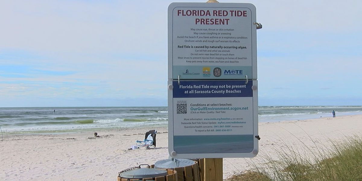 Mote says cold weather snap will not impact red tide