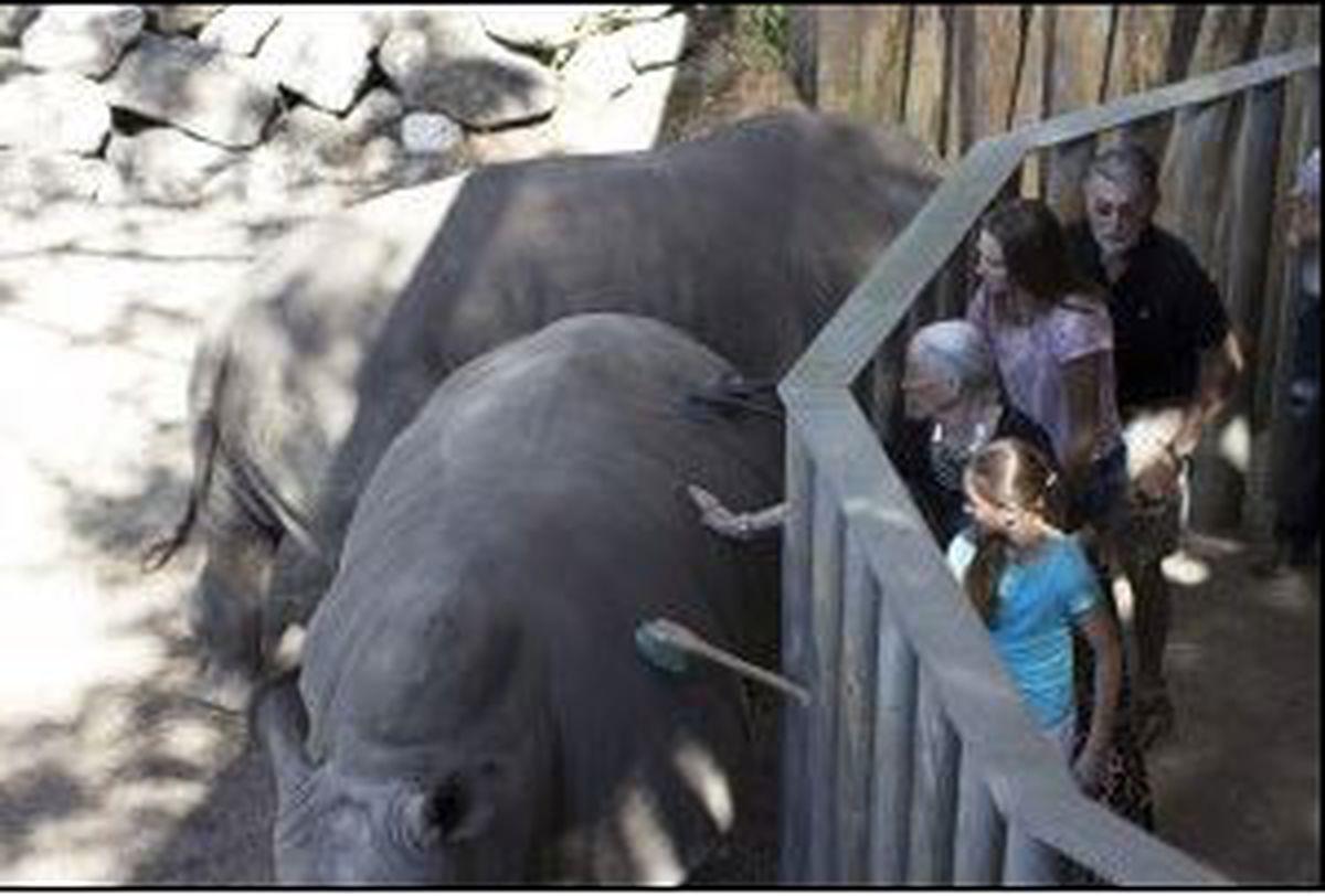 Gas Prices In Orlando Florida >> Toddler hurt falling into rhino exhibit at Florida zoo
