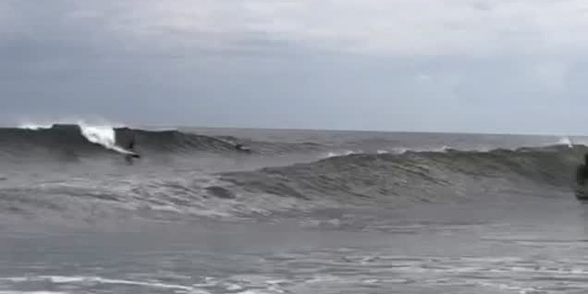 VIDEO: Surfers at the North Jetty in Venice